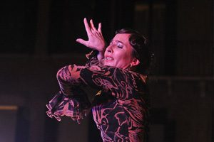 flamenco_portoburci_vicenza_corsi